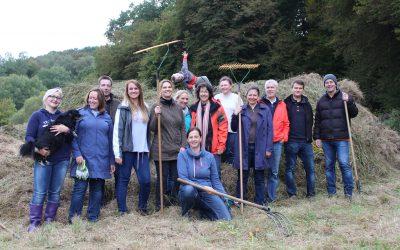 Mitarbeiter*innen der Deutschen Post unterstützen bei Wiesenpflege