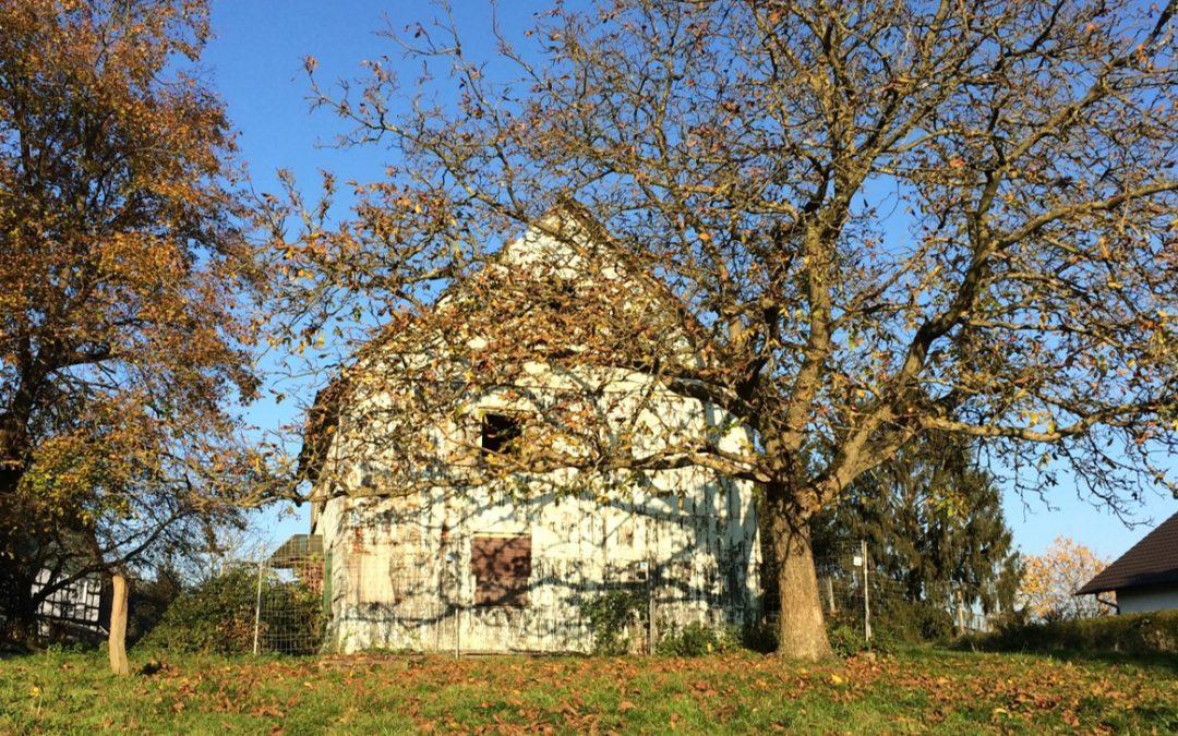 Zustand des Hofes im Herbst 2016